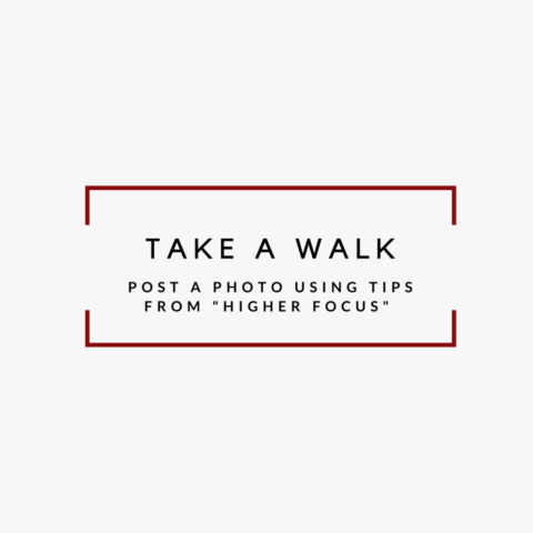 It's a great time to get out and go for a walk! Exercise is a great way to stay positive and boost your energy. Take your phone with you and practice your photography too!